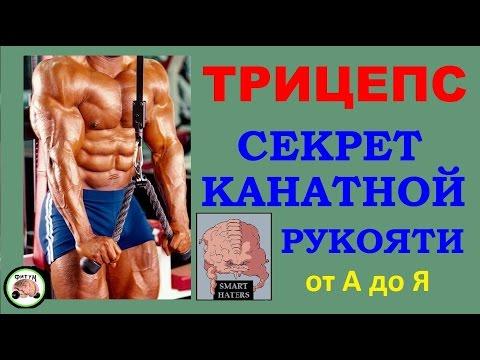 Трицепс -  секрет канатной рукояти - DomaVideo.Ru