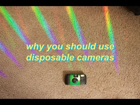 why disposable cameras are the best