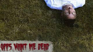 Video Lil Skies - Opps Want Me Dead (Official Audio) MP3, 3GP, MP4, WEBM, AVI, FLV Januari 2019