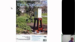 Hobby Beekeeping In Urban Environments
