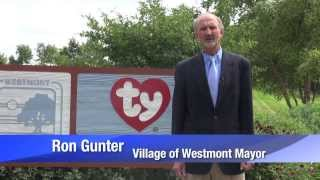 Westmont (IL) United States  City pictures : Visit Westmont, Illinois in Chicago's western suburbs