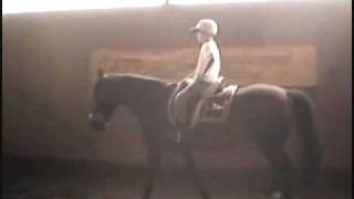 Photos and video of my mustang Joy and grandson Ian. The filly is her daughter Bonnie. The music is by Carolyn Aherns.