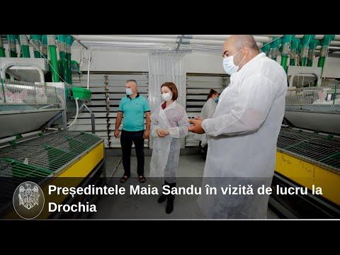 Președintele Maia Sandu, în vizită de lucru în raionul Drochia