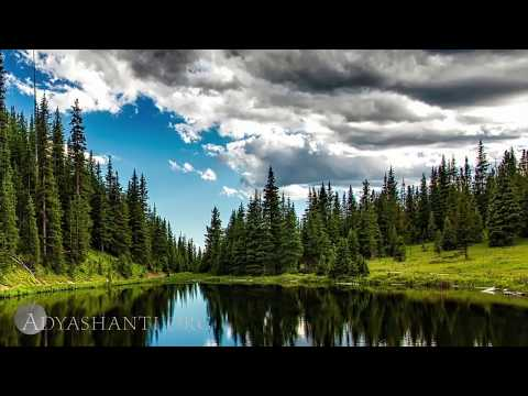 Adyashanti Guided Meditation: The Moment Perceiving Itself