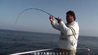船長自らvalgoで一投目真鯛80cmオーバー!ロッドEJ6041