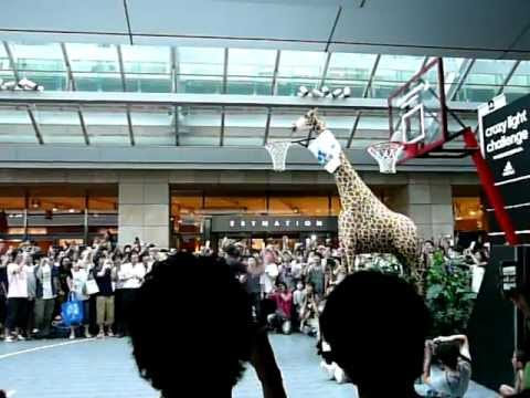 Japan: Dwight Howard Giraffe Dunk