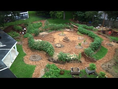 Permaculture Paradise: Edgewood Gardens August Update!