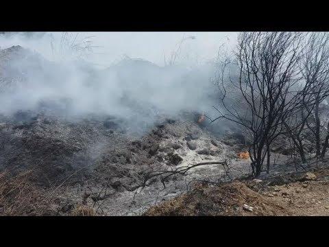 Φωτιά στη Βάρδα Ηλείας
