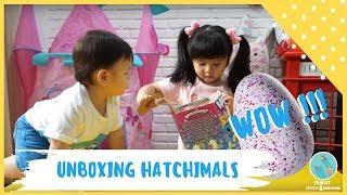Video Unboxing Hatchimals = Tes Kesabaran! Munel mau emosi hahaha MP3, 3GP, MP4, WEBM, AVI, FLV Januari 2019