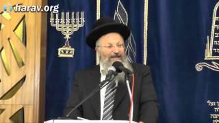 """הרב שמואל אליהו – פרשת תרומה (ה'תשע""""ה)"""