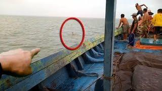 Download Video Terekam Dari Jauh! Warga Terkejut! Dikira ikan Besar, Tak Disangka Ternyata itu Sosok Rusa Di Laut! MP3 3GP MP4