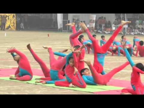 Video Apeejay Pitampura 186 Sports Day Yoga Year 2015 download in MP3, 3GP, MP4, WEBM, AVI, FLV January 2017