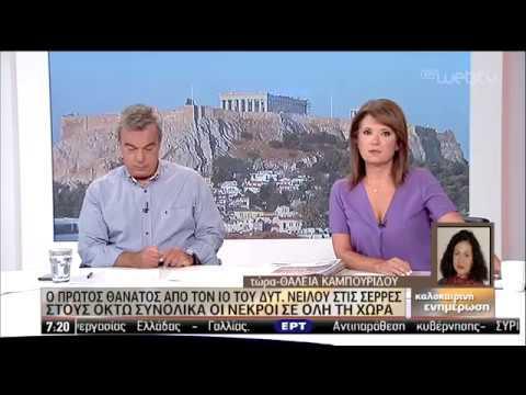 Λαμπραντόρ εντόπισε 23 κιλά κάνναβης | 22/08/2019 | ΕΡΤ