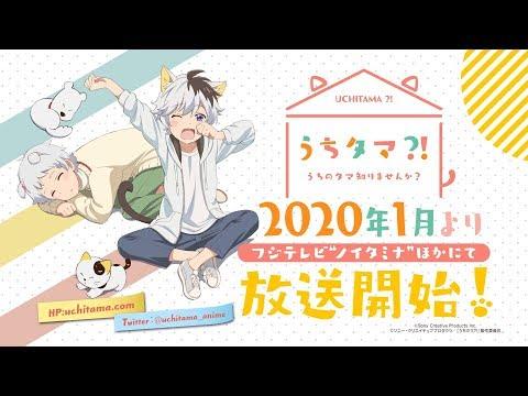 Uchitama!? Uchi no Tama Shirimasen ka? Announces TV Anime for Winter 2020!