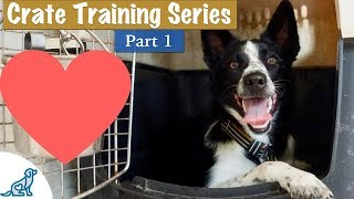 Video Crate Training A Puppy (So They LOVE Their Crate) - Professional Dog Training Tips MP3, 3GP, MP4, WEBM, AVI, FLV Juni 2019