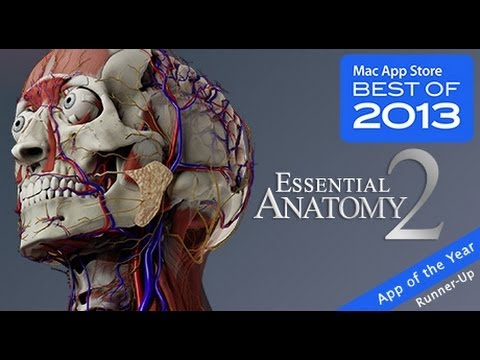 Medical Apps For iPhone and iPad