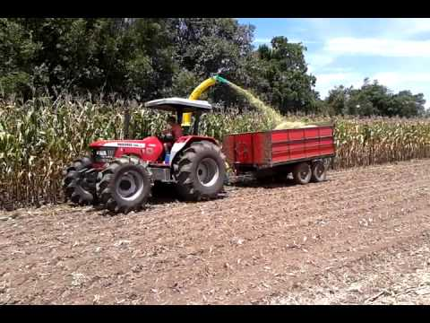 Mahindra 8000/4WD - Silagem - Vale do Sol/RS