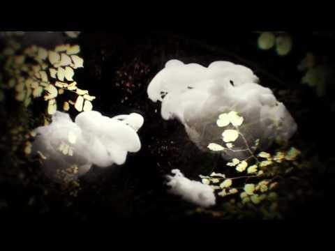 Tekst piosenki Little Dragon - Blinking Pigs po polsku