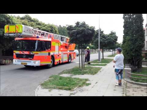 Výjezd: Odstranění obtížného hmyzu 4.8.2017 SDH Michálkovice