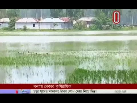 Char croplands submerge under water from upstream (18-09-2018)