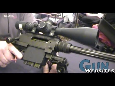 Nemesis Arms multi-caliber rifle