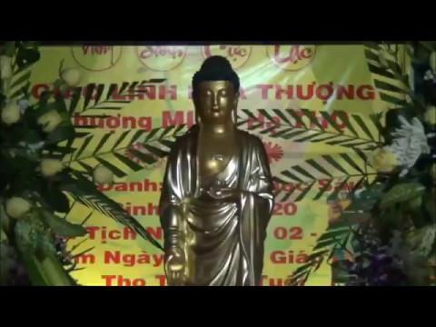 Tang lễ Cố Đại Lão Hòa Thượng Thượng MINH Hạ THỌ (Viên tịch ngày 23-1 Giáp Ngọ)