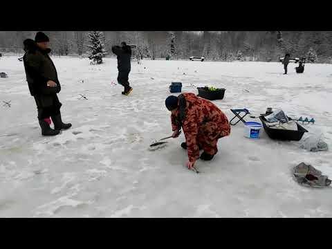Зимняя ловля форели КРХ Трифон 1 февраля 2020