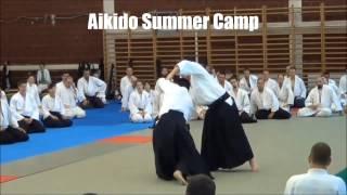 Szekesfehervar Hungary  city photo : Kobayashi Hiroaki Aikido Summer Camp Székesfehérvár Hungary 2013 teaser