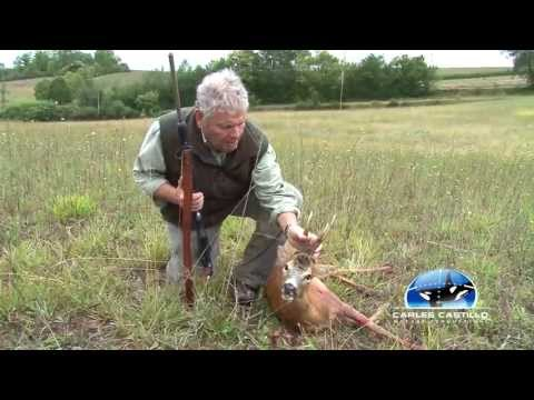 Hunt and shoot of roebuck 7 / Chasse et tir d´un brocard 7 / Caza y tiro de un corzo 7