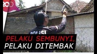 Video Maling Sapi ditembak MP3, 3GP, MP4, WEBM, AVI, FLV Mei 2019