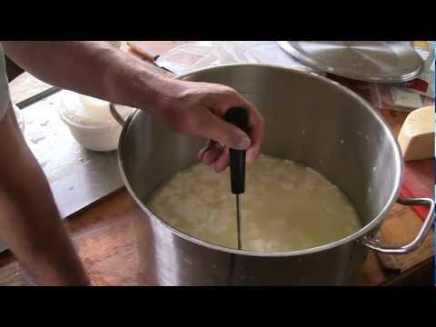 Рецепт изготовление козьего сыра в домашних условиях 406