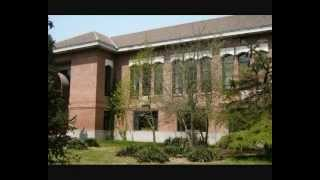 Университет Цинхуа / Tsinghua University – 清华大学