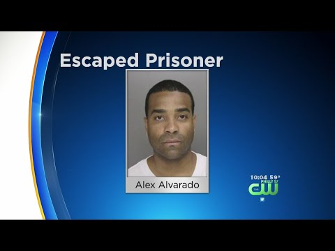 Video WANTED: Philly Police Searching For Escaped Prisoner download in MP3, 3GP, MP4, WEBM, AVI, FLV January 2017