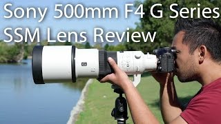 Please support my channel by purchasing the Sony 500mm F4 G Series SSM lens through the following link - http://amzn.to/2hzJW8GSony 500mm F4 G Series SSM Unboxing - http://bit.ly/2nyy8GMAfter three years after the unboxing of the Sony 500mm F4 lens, I finally have the video ready for you all to see. I primarily used the Sony A99M2 for this video but also snuck in the Sony A7RM2 for a few test shots and the Sony 2X teleconverter to show you if its worth getting in a different combinations. Follow me and ask me questions! ➫ F A C E B O O K  - http://on.fb.me/rtdqar (@johnsisonphotos)➫ I N S T A G R A M - http://bit.ly/MsGf1t (@johnsison)➫ T W I T T E R -  http://bit.ly/1Uadibb (@JohnSison_)Intro by Flukemedia - http://bit.ly/2j3AxUE---------------------------------------------------------------------------------------------------------------------------------------B U S I N E S S :admin@johnsison.com---------------------------------------------------------------------------------------------------------------------------------------Gear used to film this video: Sony ILCE-7RM2 (http://amzn.to/2hlCr5z)Sony ILCE-7SM2 (http://amzn.to/2hft4no)Sony 24-70mm F2.8 G Master lens (http://amzn.to/2hEMXkZ)Rodelink Film Maker (http://amzn.to/2gwrrT9)Sandisk Extreme Pro 64gb 280MBs (http://amzn.to/2hfLnsk) Manfrotto MK190X3-2W (http://amzn.to/2j4SjGc)---------------------------------------------------------------------------------------------------------------------------------------I try to get back to everyone who asks me a question as quickly as possible but for me to 'Reply' to you, your gmail account has to be linked to your YouTube account. Thank you. ---------------------------------------------------------------------------------------------------------------------------------------DISCLAIMER: This video and description contains affiliate links, which means that if you click on one of the product links, I'll receive a small commission. This helps support the channel and allows us to continue to make videos like this. Thank you for the support!---------------------------------------------------------------------------------------------------------------------------------------