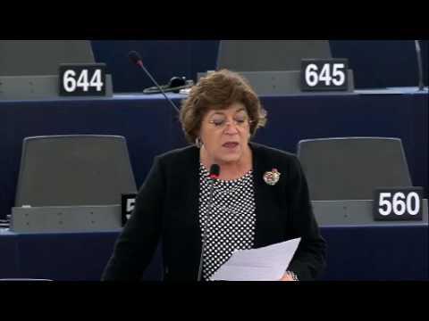 Ana Gomes debate sobre a adequação da proteção proporcionada pelo escudo de privacidade UE-EUA