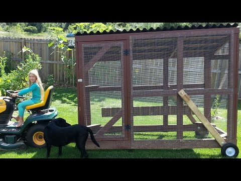 Chicken Tractor – Taking the Chickens Out to Eat
