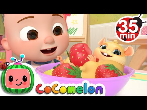 Class Pet Sleepover + More Nursery Rhymes & Kids Songs - CoComelon