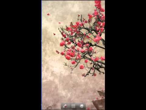 Video of Galaxy S4 Leaf Lonely Tree LWP