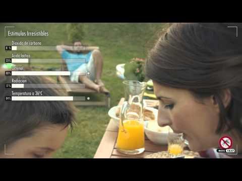 Video: Jata MT8 vábnička (MOSTRAP) - český dabing 2014