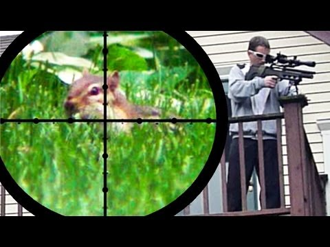 pest control - This video was nixed by Youtube many months ago. So, I re-edited it - moving all of the slow-motion footage to an unlisted video. There is a link to that foo...