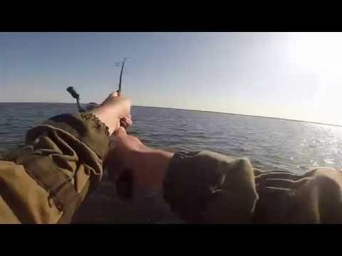 рыбалка на нижней волге видео в 2015 году видео