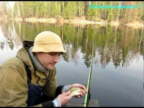 рыбалка ловля карася в апреле видео