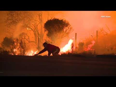 Man saves rabbit from wildfire