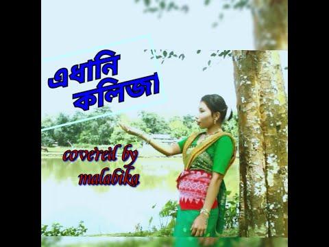 Edhani kolija// Priyanka bharali// Covered by malabika