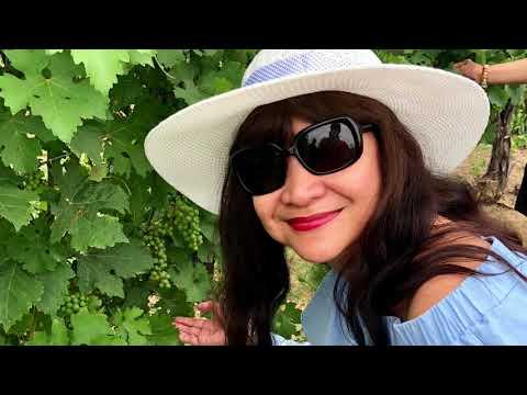 Niagara Canada One Day Wine Tour, Grape Escapade, Wining and Dining