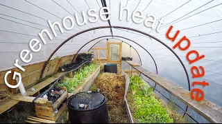 """This is an update, one year later, on my first video on """"compost heat for greenhouses."""" https://www.youtube.com/watch?v=Z-b8VowUY-4- My greenhouse:  15 meters square. The lining of the greenhouse is thin plastic thus zero insulation.- Climate: temperate, usually gets several degrees Celsius below zero in winter. South of France, lots of sun.What I learnt:Passive heating:All the different techniques I use for passively heating the greenhouse slightly help in taking the edge of the cold nights. These techniques are:- heat storage using containers painted black and filled with water. Water is the best heat accumulator, during the day the barrels of water slowly heat up as the green house heats up. Then during the night, as the greenhouse cools down, the stored heat is slowly released.- garbage bins filled with soil that are also used for growing. The mass of the earth in the bins also acts as a heat accumulator.- compost (manure and hay). I use a method for making fast compost called the Berkley method. It consists of making a 1.5m x 1.5m x 1.5m compost pile. Alternate 5cm layers of manure  and hay are piled up (I use a horse and sawdust mix) The hay is soaked in water before adding it to the pile. This mix provides perfect conditions for the development of thermophylic bacteria and mycelium. After 4 days or so the inside temperature reaches around 70 degrees Celsius. Then  every 2 or so days the pile is turned, the outer layers are moved to the inside and the warmer inner layers are moved to the outside. This is done so that the decomposition process reaches all parts of the pile. The temperature slowly drops and after 3 weeks to a month. The pile has cooled down and the compost can be used in the garden. During winter I will make 2 or 3 piles inside the greenhouse. The heat that the pile radiates will help take the chill off cold nights.The compost pile also gives of CO2 which plants use, I have read that increased C02 boosts plant growth. I have read that ammonia is"""