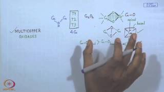 Mod-13 Lec-13 Electron Transport Proteins - IX