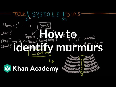 How to identify murmurs | Circulatory System and Disease | NCLEX-RN | Khan Academy