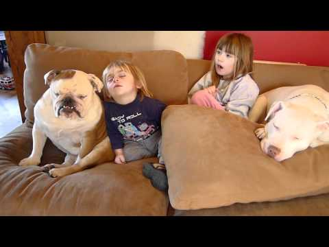 Ryder - This is a quick video of our son Ryder and Bulldog Rosco simultaneously dozing off for a nap. Also in the video is our daughter Riley and Pit Bull Stella !