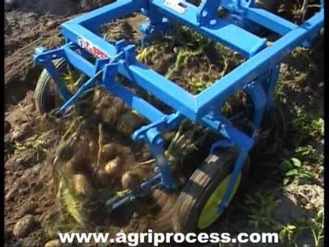 Arracheuse de pomme de terre pour petit tracteur - Agriprocess